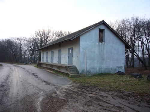 Bild_20044