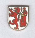 Frauenfelder-Pin