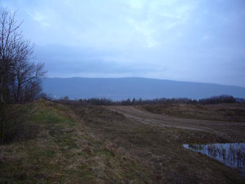Bild_20041